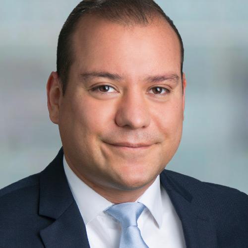 Ricardo Gaudnik